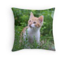 Little Fellow III Throw Pillow
