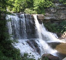 Blackwater Falls State Park by VickyG
