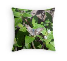 butterfly beauty Throw Pillow