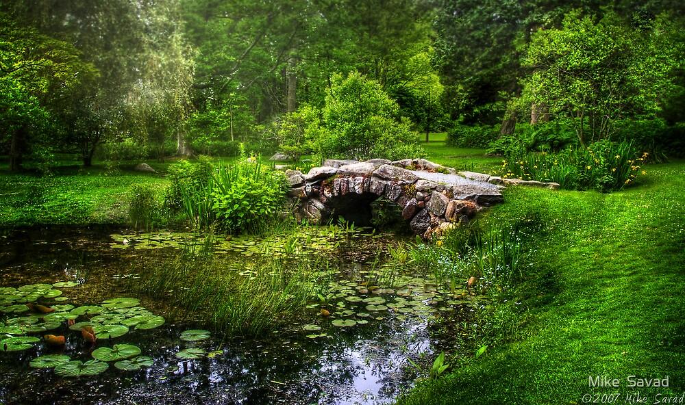 Little Bridge by Mike  Savad