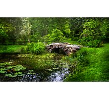 Little Bridge Photographic Print