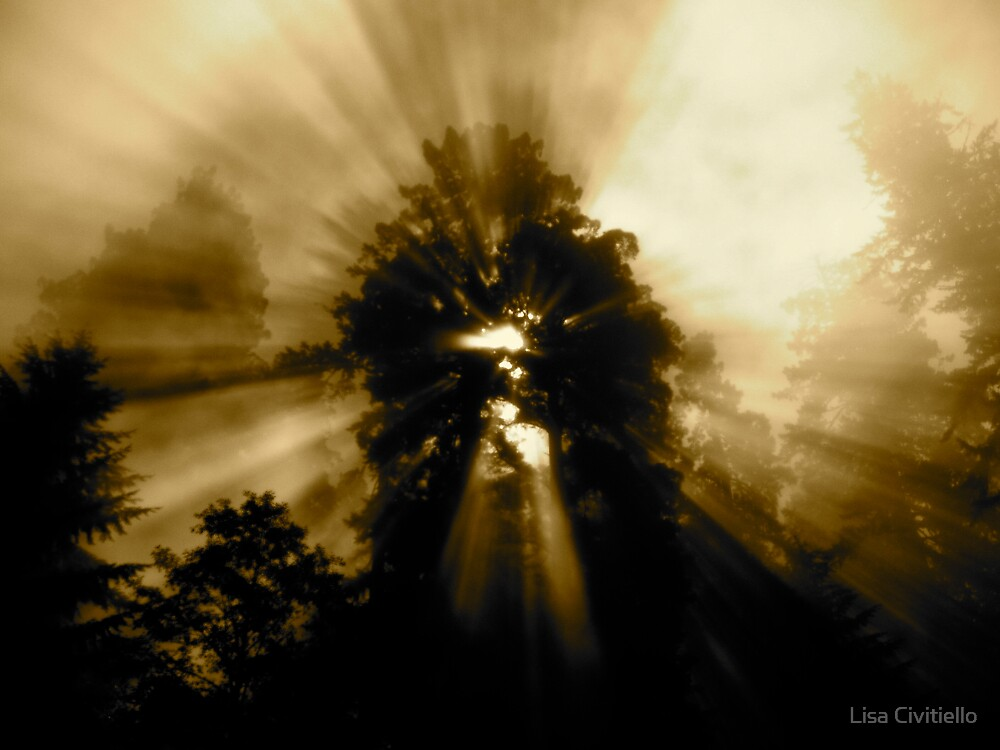 Shine on Me Again by Lisa Civitiello