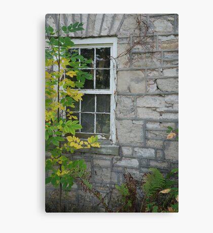 Overgrown History Canvas Print
