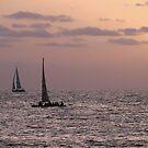 Sail boat sunset by Matt Dawdy