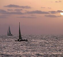 Sail boat sunset by Matt Dawdy