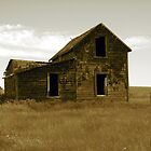 Old Homestead by timeless
