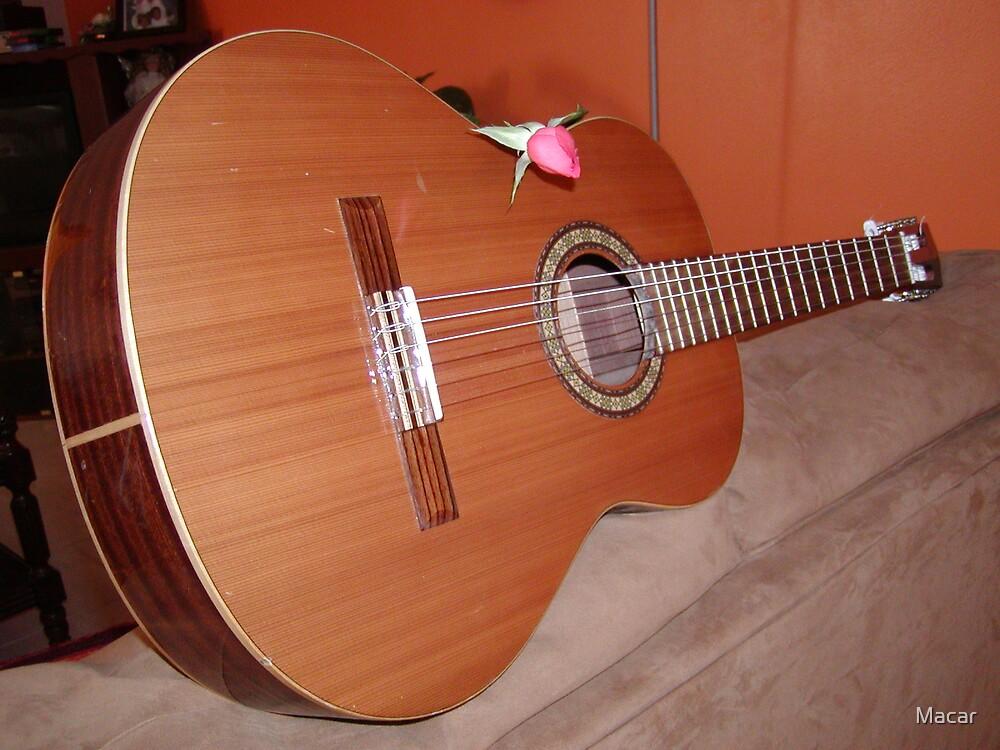 Acustic guitar by Macar