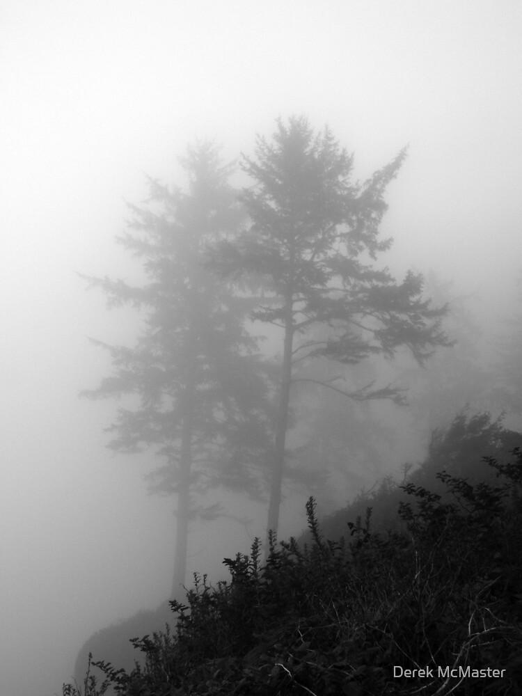 Trees in Fog 3 by Derek McMaster