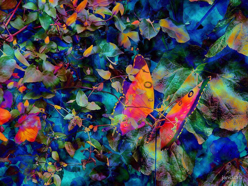 Butterfly in the garden by janskorb