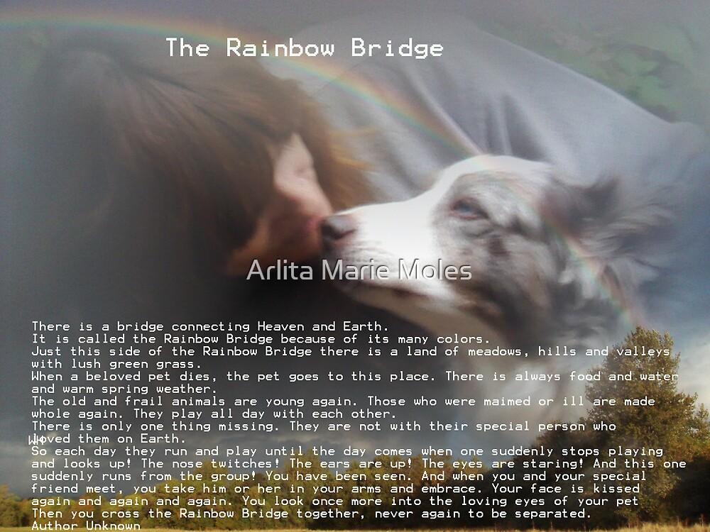 The Rainbow Bridge       Author Unknown by Arlita Marie Moles