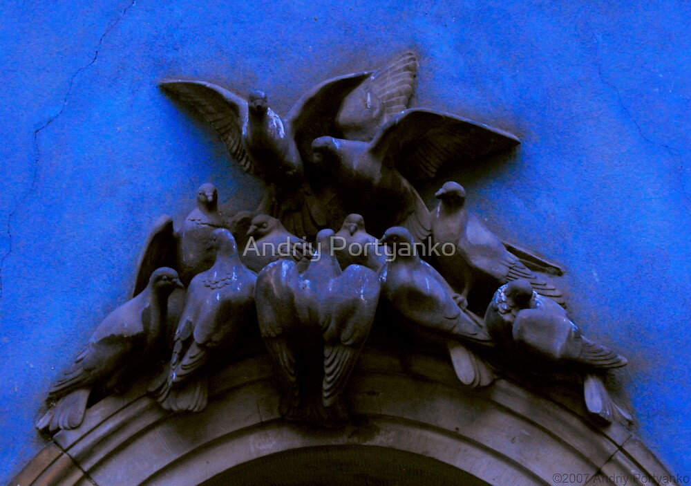Pigeons by Andriy Portyanko