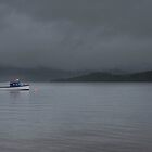 Mist over Loch Lomond  by Rob Hawkins