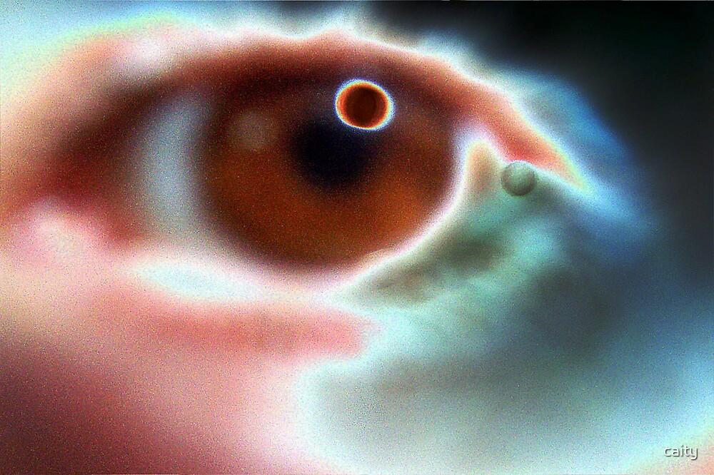 solar eye by caity