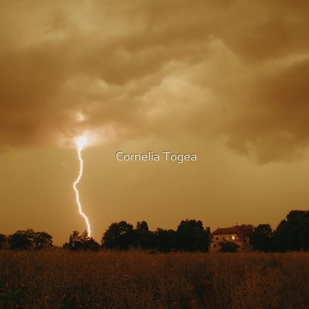 lightning by Cornelia Togea