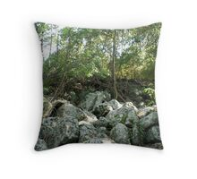 Burleigh Heads National Park Throw Pillow