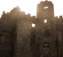 Laugharne Castle 2 by Faye Ashford