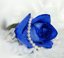 Blue Velvet by Maria Dryfhout