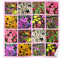 COLORFUL WILD FLOWER PHOTO COLLAGE Poster