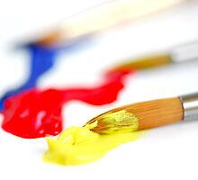 Primary colors paintbrush by Elena Elisseeva