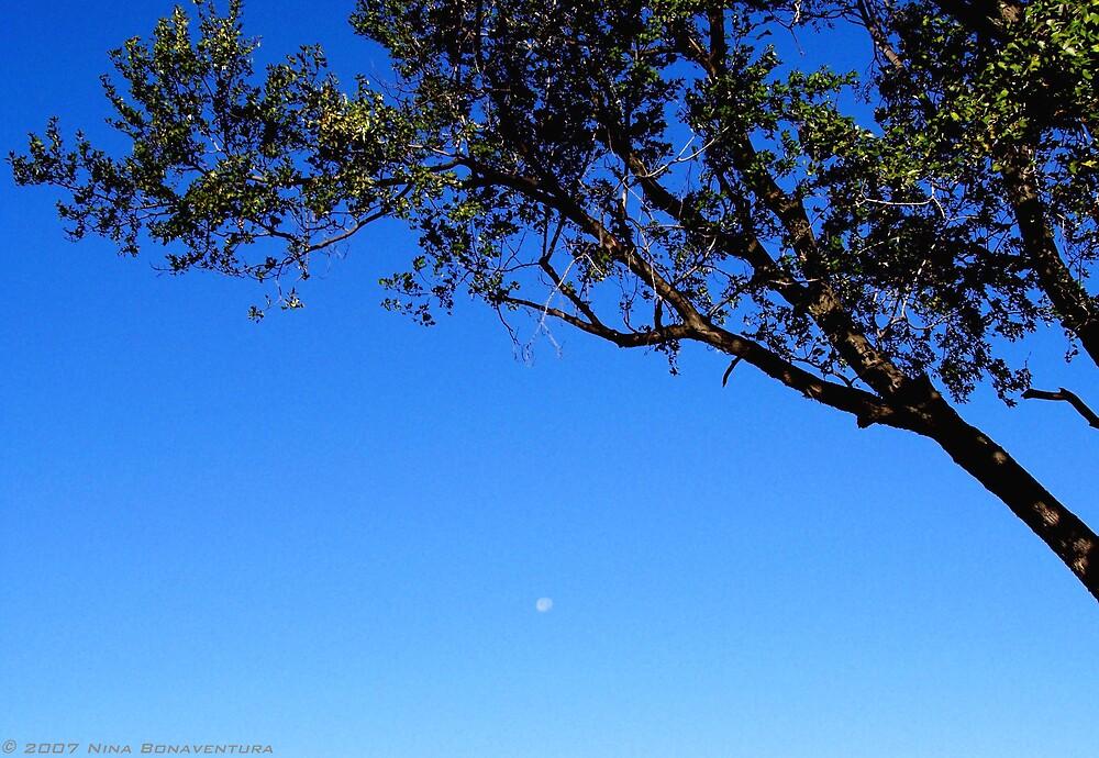 day moon by NinaB