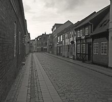 Cobblestone Lane by Andy Mueller