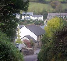 View of Branscombe Village  by ShutterMole