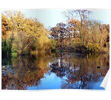 Autumn at Leigh Park Gardens Poster