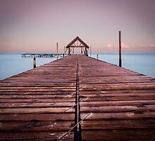 Mauritius At Dawn by Simon Hills