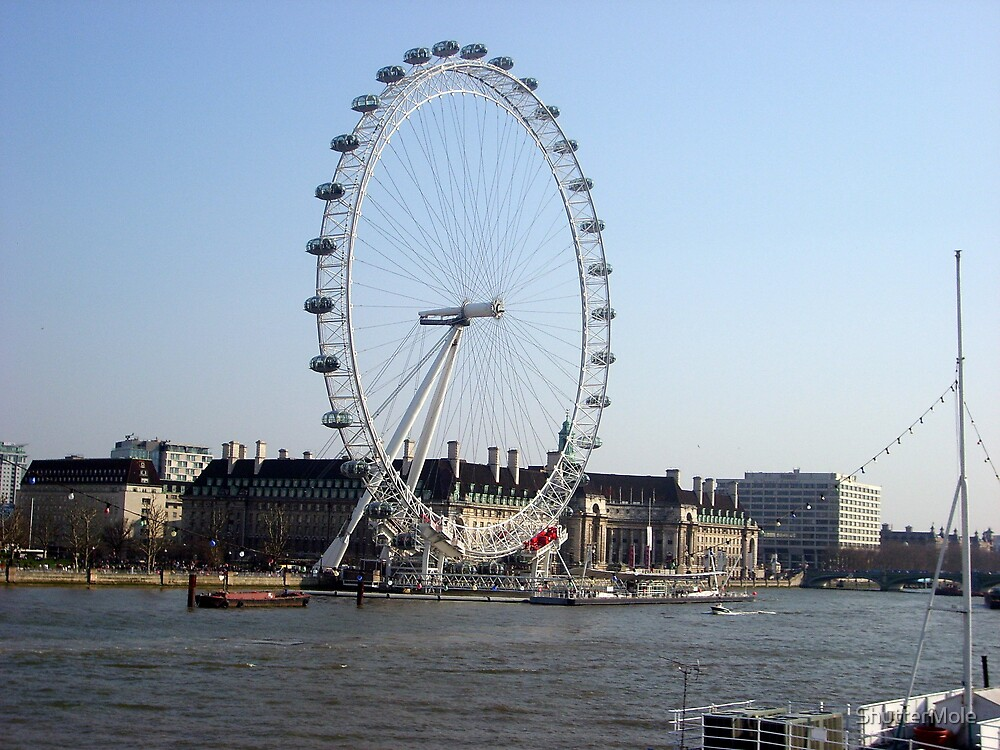 View of The Millenium Eye by ShutterMole