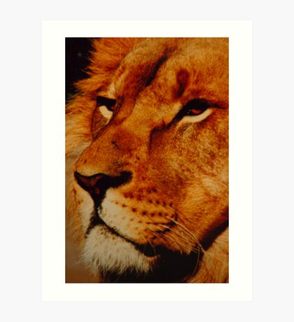 I am King (coulor) Art Print