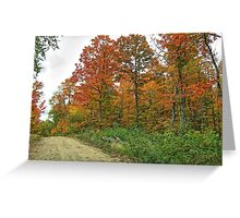 The Lonely Road of Fall Greeting Card