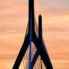 Zakim bridge Boston by Elena Elisseeva