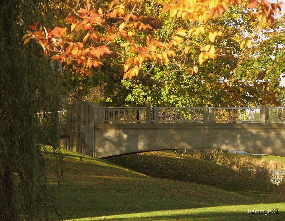 Autumn in the park by hammye01