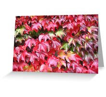 autumn ivy Greeting Card