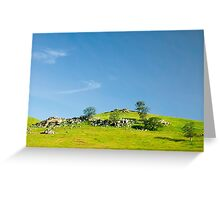 Light and Shadows - Spring In Central California Greeting Card