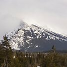 The Canadian Rockies in winter by Josef Pittner