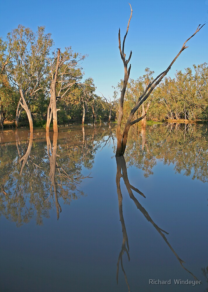 Creek at Nindigully, Qld by Richard  Windeyer
