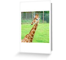 Look Mum I can touch my nose!!!!!!! Greeting Card