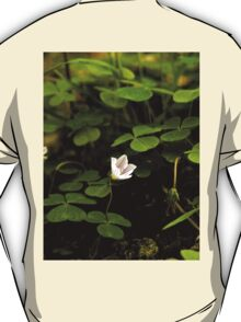 Wood Sorrel, Ness Woods, County Derry T-Shirt