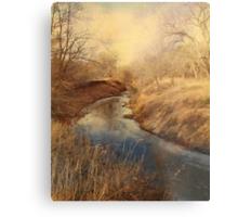 Following the Creek Metal Print