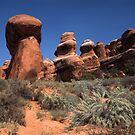 Desert Form by mymamiya