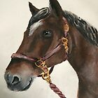 Horse Painting by Jagged-designs