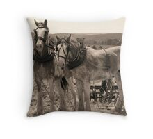 Working Draught Throw Pillow