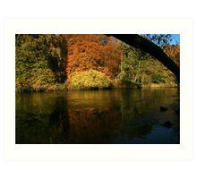 natures framing of reflections Art Print