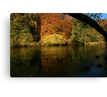natures framing of reflections Canvas Print