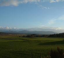 Natural Scotland by Linda Bretherton