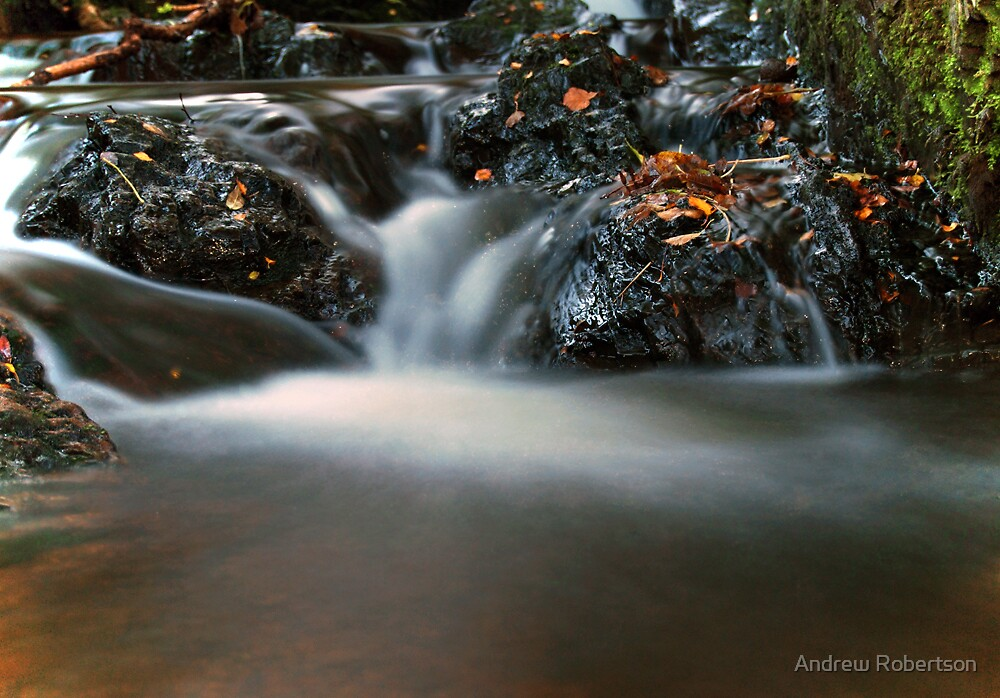 Baby Fall by Andrew Robertson