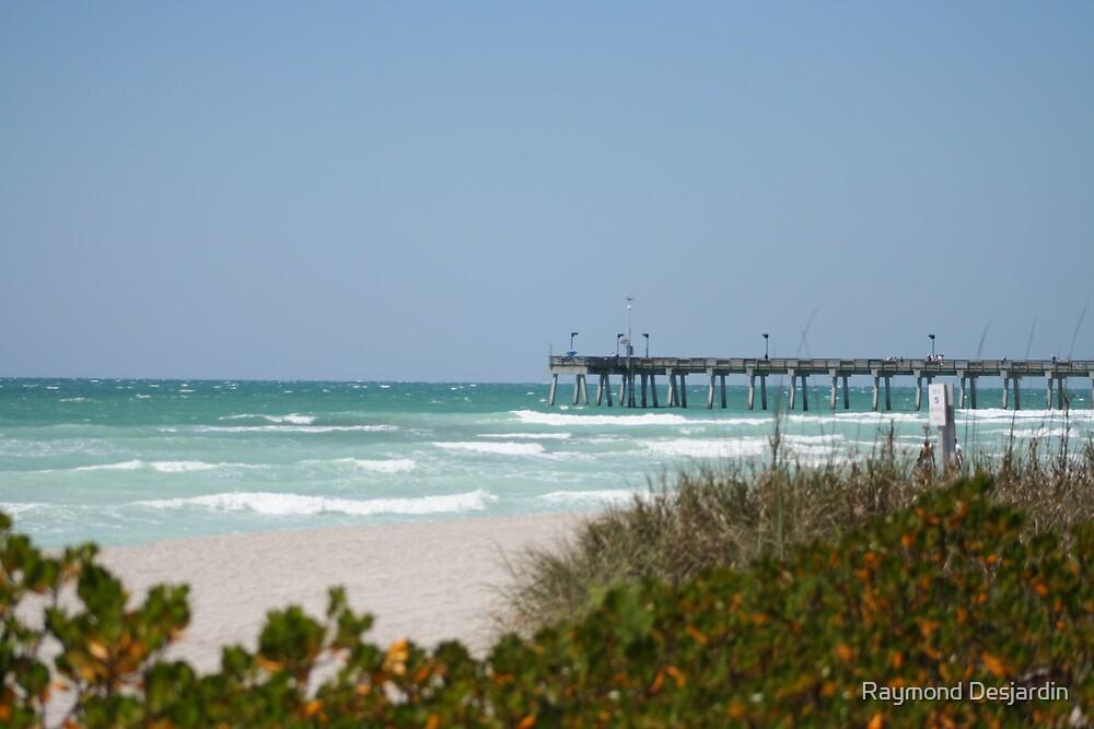 pier at dog beach by Raymond Desjardin