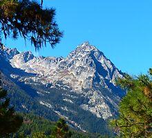 Trapper Peak by lindasdreams