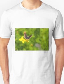 Artwork - Brown Argus T-Shirt